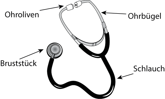 stethoskop aufbau